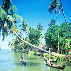 Best of Kerala with Treehouse Stay