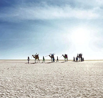 Kutch Tour Package