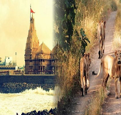 somnath-tour-gir